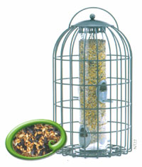 Squirrel Proof Extra Large Seed